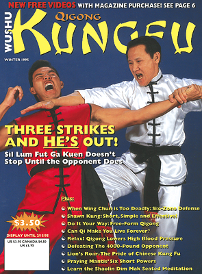 Kungfu Magazine 1995 Winter