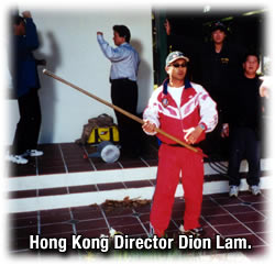 One of Ching Siu-tung's prot?g?s from the late 80s, Dion Lam.