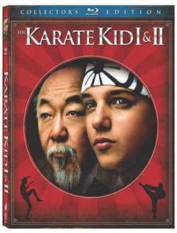 Original Karate Kid moview poster