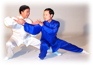 Chen Taiji push hands