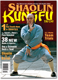 Kungfu Tai Chi 2007 Nov/Dec