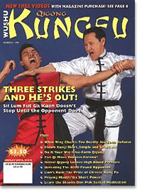 Kungfu Qigong 1995 Winter